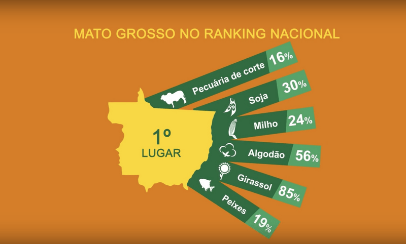 KORY MELBY AG PRODUCT RANKING MATO GROSSO